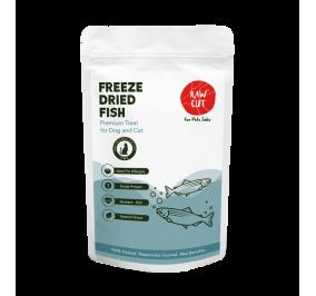 Freeze Dried - Fish Pet Treats